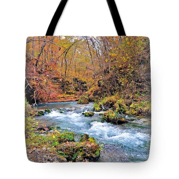 Greer Spring In Fall Tote Bag by Marty Koch