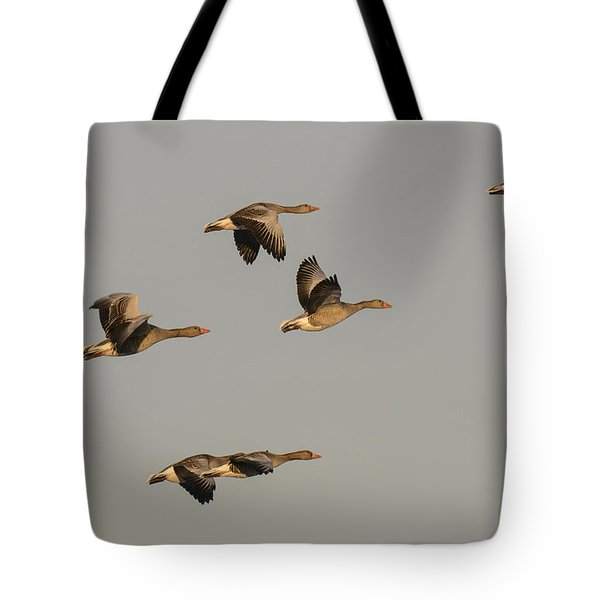 Grey Geese Tote Bag by Michael Mogensen