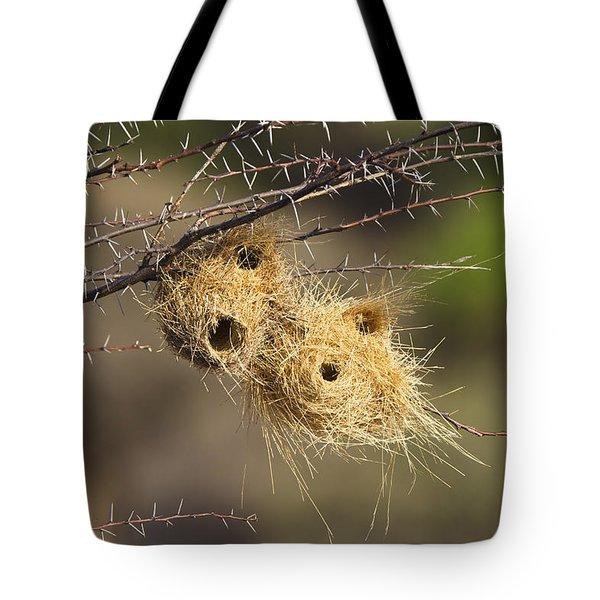Grey-headed Social-weaver Nests Tanzania Tote Bag by Konrad Wothe