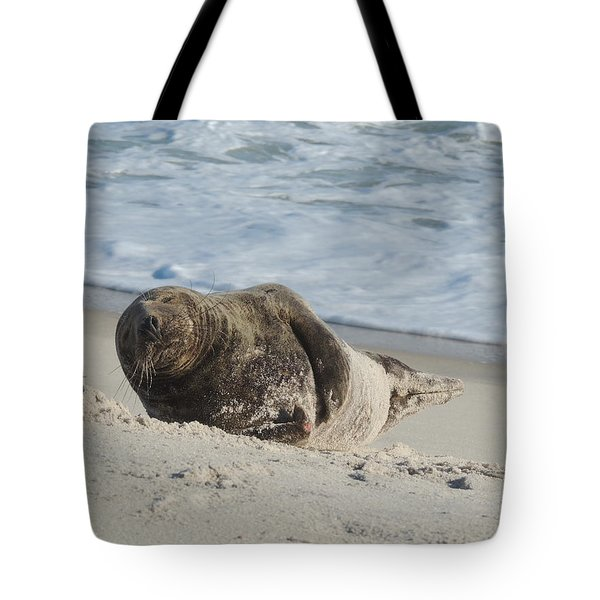 Grey Seal Pup On Beach Tote Bag by Kimberly Perry