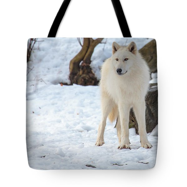 Grey Wolf Tote Bag by Everet Regal