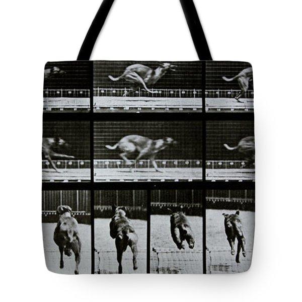 Greyhound Running Tote Bag by Eadweard Muybridge
