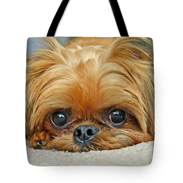 Tote Bag featuring the photograph Griff by Lisa Phillips