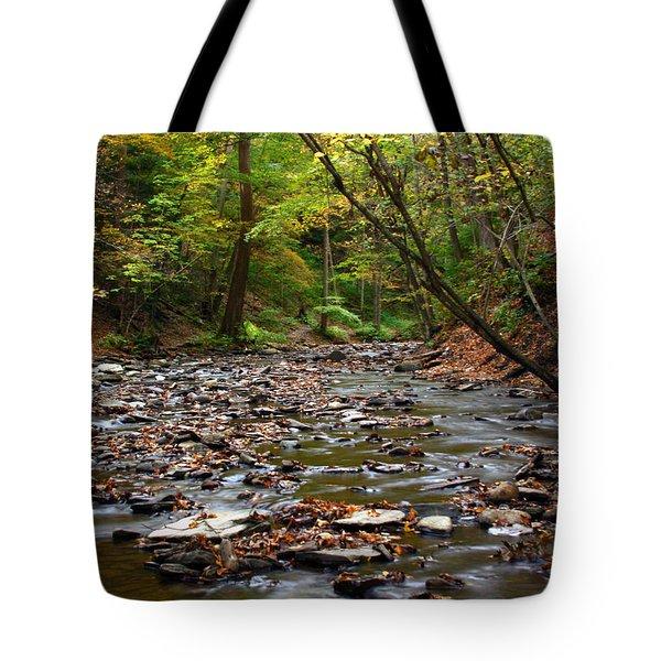 Creek Walk Tote Bag by Richard Engelbrecht