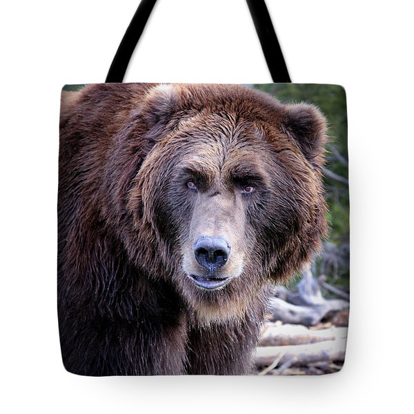 Tote Bag featuring the photograph Grizzly by Athena Mckinzie