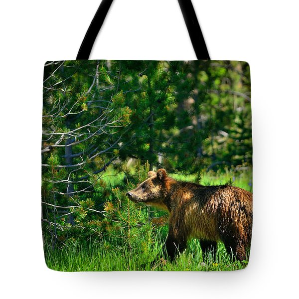 Tote Bag featuring the photograph Grizzly Bear 760 by Greg Norrell
