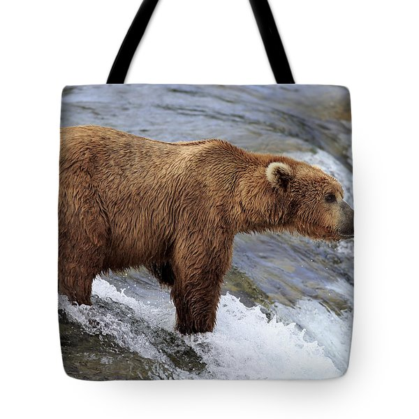 Grizzly Bear Fishing For Salmon Tote Bag