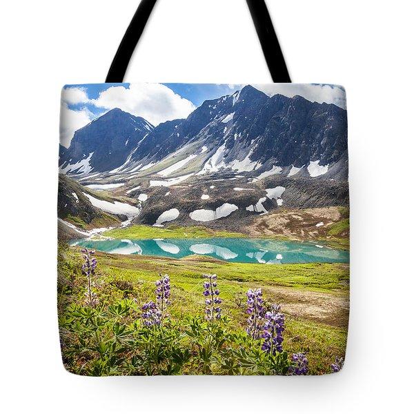 Grizzly Bear Lake Tote Bag