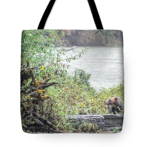 Grizzly Bear Late September 2 Tote Bag