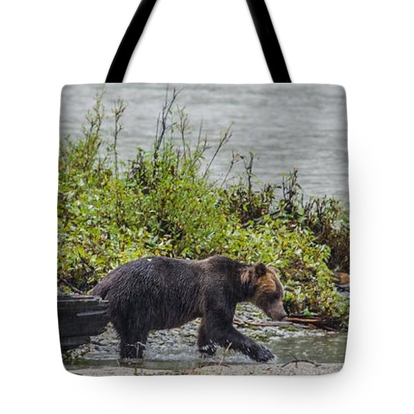 Grizzly Bear Late September 4 Tote Bag