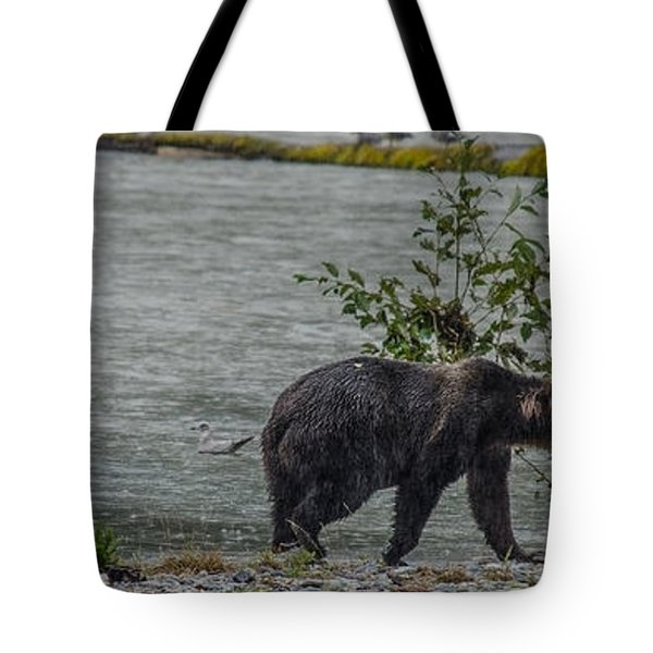 Grizzly Bear Late September 5 Tote Bag