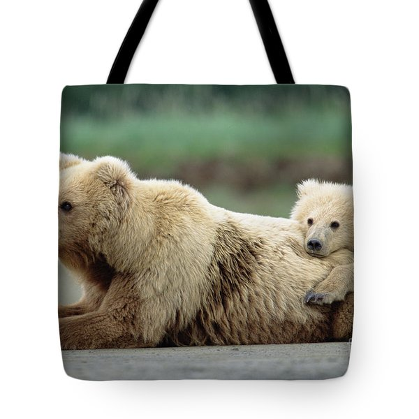 Grizzly Mother And Son Tote Bag