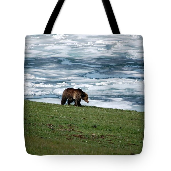 Tote Bag featuring the photograph Grizzly Bear On The Shoreline Of Frozen Lake Yellowstone by Shawn O'Brien