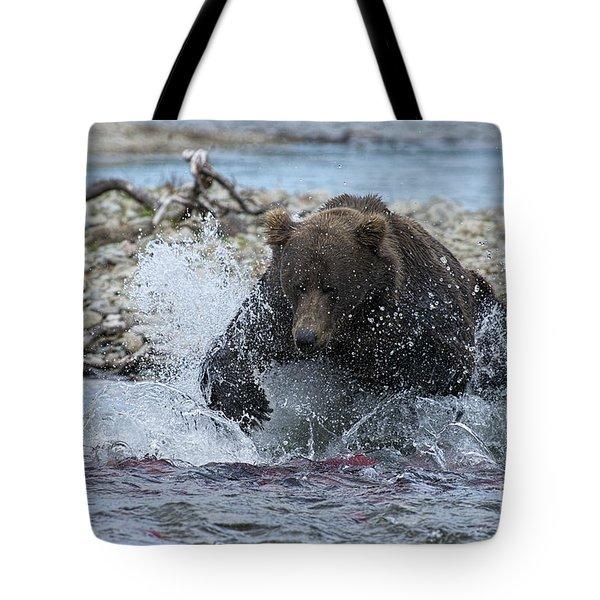 Brown Bear Pouncing On Salmon Tote Bag by Dan Friend