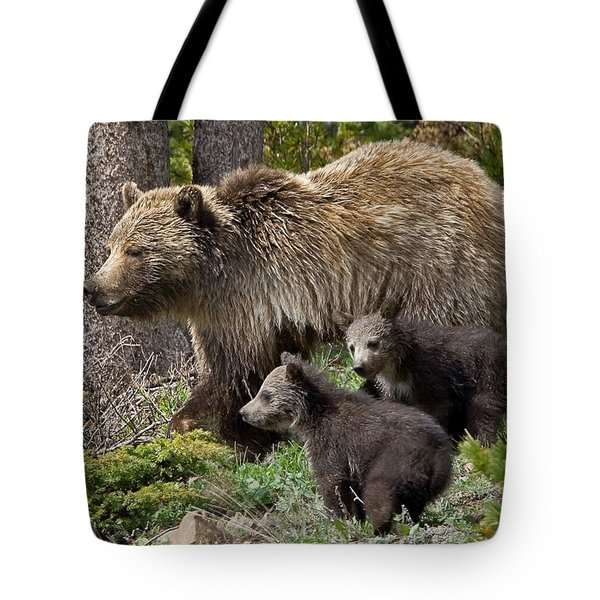 Grizzly Bear With Cubs Tote Bag