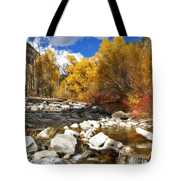 Tote Bag featuring the photograph Grizzly Creek Canyon by Jeremy Rhoades