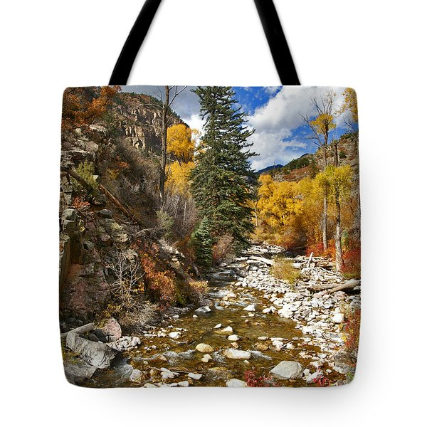 Tote Bag featuring the photograph Grizzly Creek Cottonwoods Vertical by Jeremy Rhoades