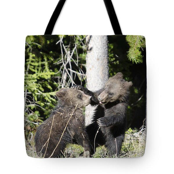 Grizzly Cubs Playing Tote Bag