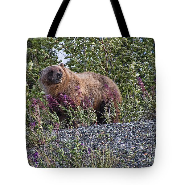 Grizzly Tote Bag by David Gleeson