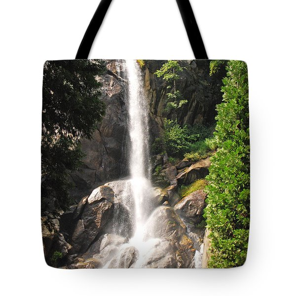Tote Bag featuring the photograph Grizzly Falls by Mary Carol Story