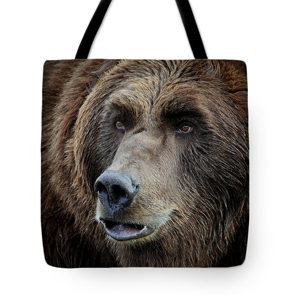 Grizzly Mugshot Tote Bag by Athena Mckinzie