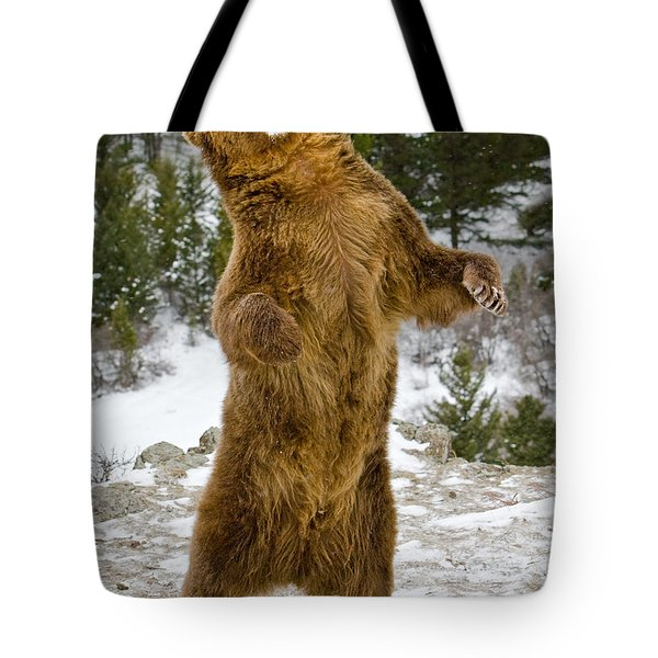 Tote Bag featuring the photograph Grizzly Standing by Jerry Fornarotto