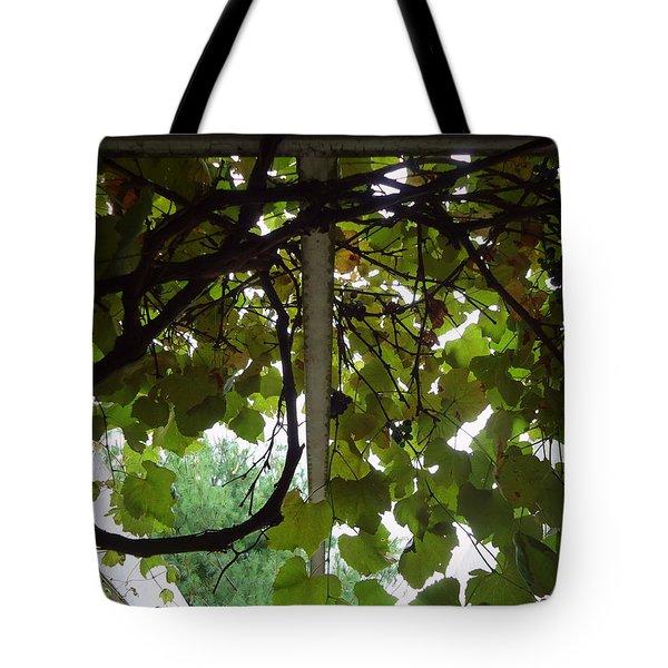 Tote Bag featuring the photograph Gropius Vine by Joseph Skompski