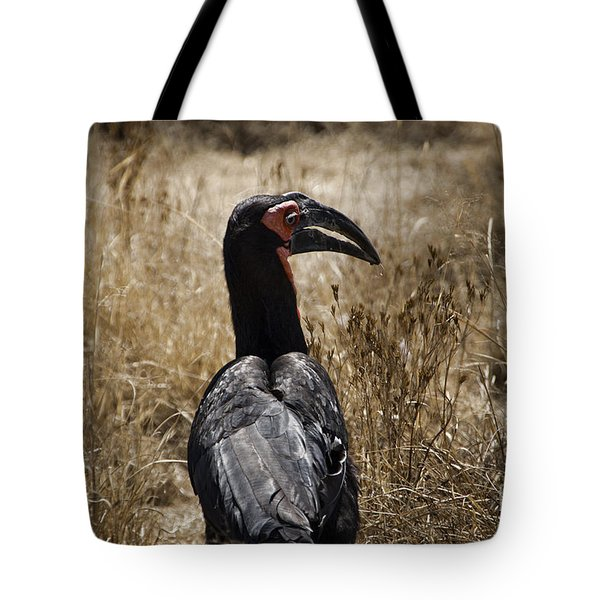 Ground Hornbill-africa Tote Bag by Douglas Barnard