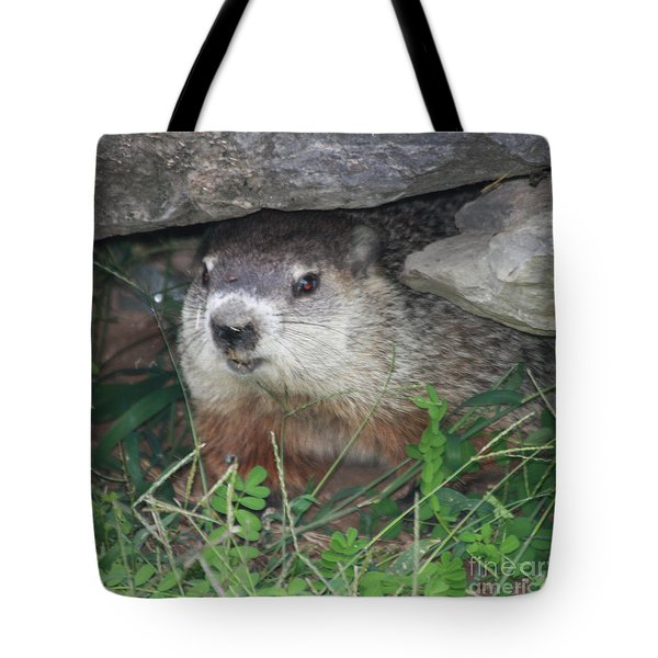 Groundhog Hiding In His Cave Tote Bag