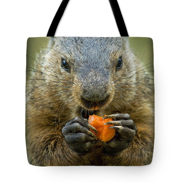 Groundhogs Favorite Snack Tote Bag