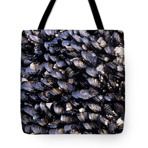 Group Of Mussels Close Up Tote Bag