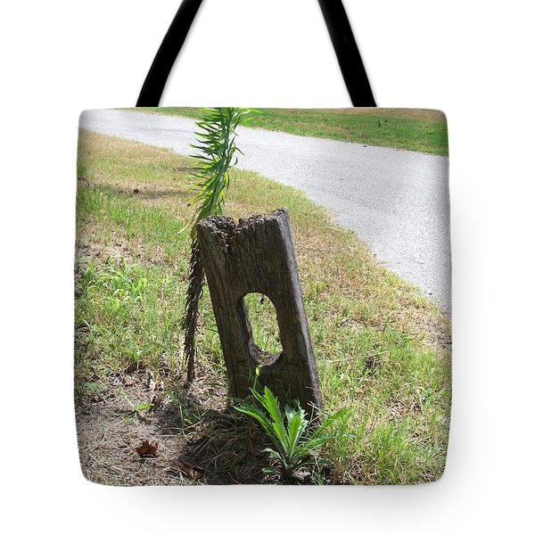 Group Of Three Tote Bag by Katie Beougher