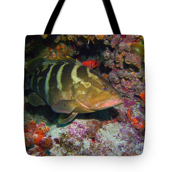 Grouper Tote Bag by Carey Chen
