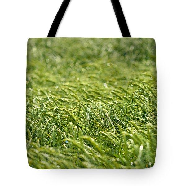 Growing Tote Bag by Ivan Slosar