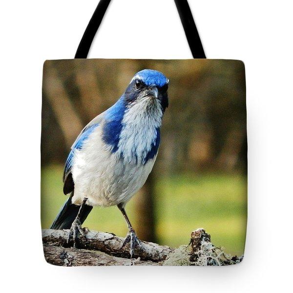 Grumpy Jay Tote Bag by VLee Watson