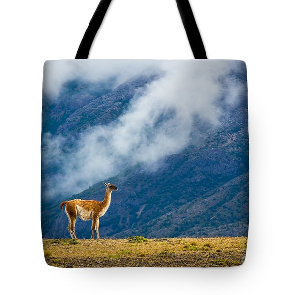 Guanaco Mother And Child Tote Bag