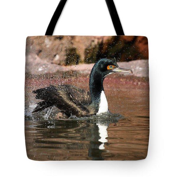 Guanay Cormorant Tote Bag by Karol Livote