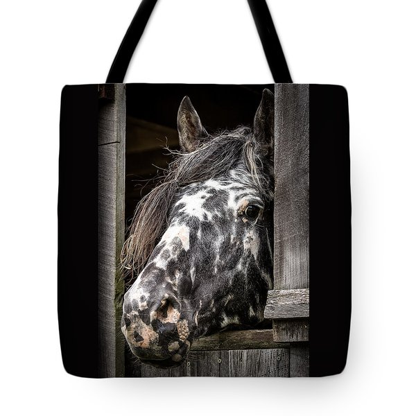 Guard Horse-what's The Password? Tote Bag