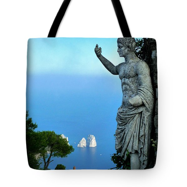 Guarding The Water Tote Bag by Mike Ste Marie