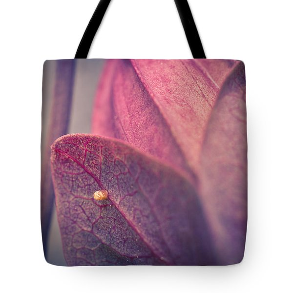 Gulf Fritillary Butterfly Egg Tote Bag by Priya Ghose