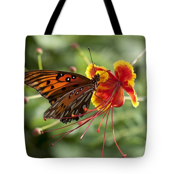 Tote Bag featuring the photograph Gulf Fritillary Photo by Meg Rousher