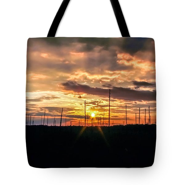 Gulf Shore Sunset Tote Bag