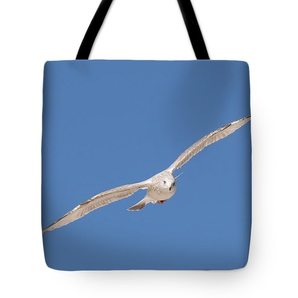 Gull In Flight - 2 Tote Bag