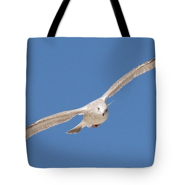 Gull In Flight  Tote Bag