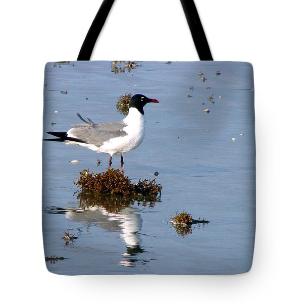 Tote Bag featuring the photograph Gull In Seaweed by Linda Cox