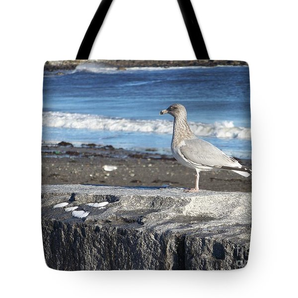 Seagull  Tote Bag by Eunice Miller