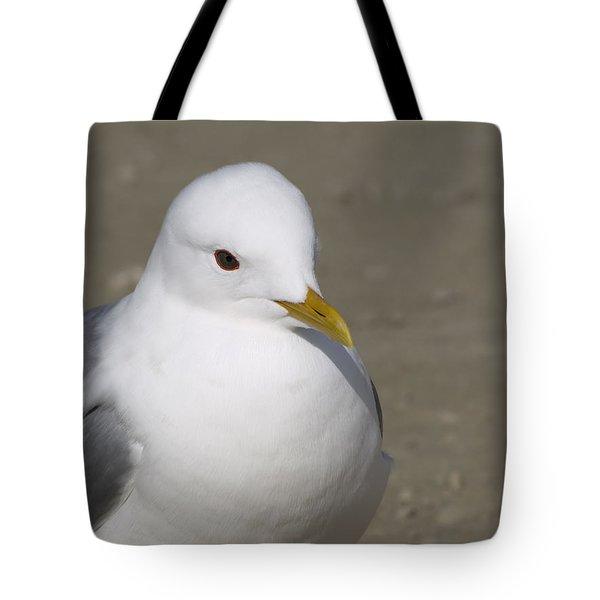 Gull Tote Bag by Tara Lynn
