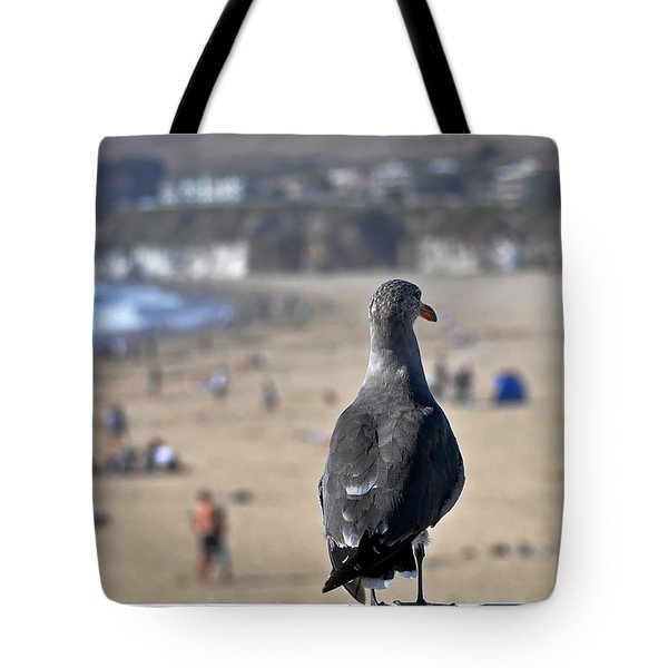 Gull Watching Beach Visitors Tote Bag