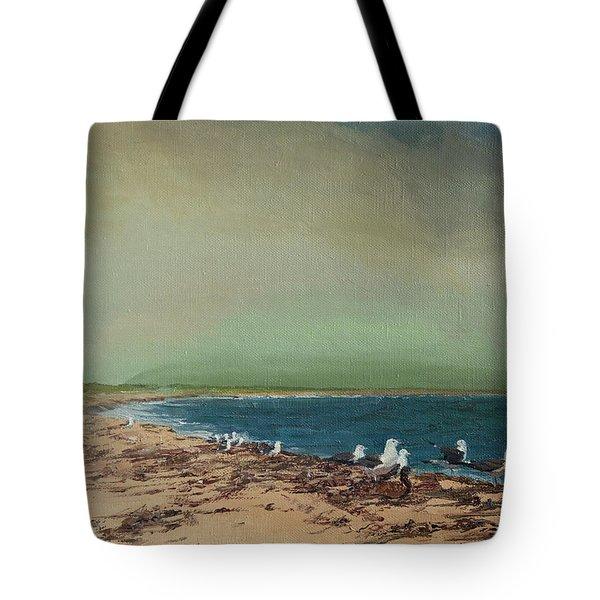 Gulls On The Seashore Tote Bag