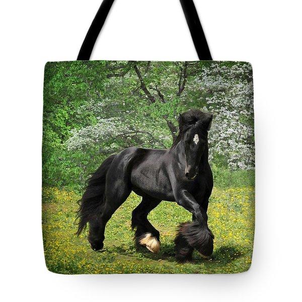 Gypsy Stallion Shadow Tote Bag by Fran J Scott